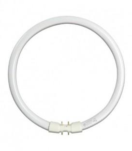 Люминесцентная лампа кольцевая GE FC55W/T5/830 2GX13, D300mm