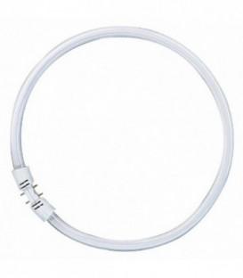 Люминесцентная лампа кольцевая Osram FC 55 W/830 T5 2GX13, D300mm