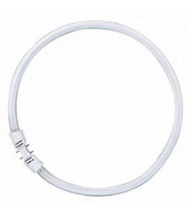 Люминесцентная лампа кольцевая Osram FC 40 W/827 T5 2GX13, D300mm