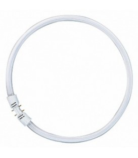 Люминесцентная лампа кольцевая Osram FC 40 W/840 T5 2GX13, D300mm